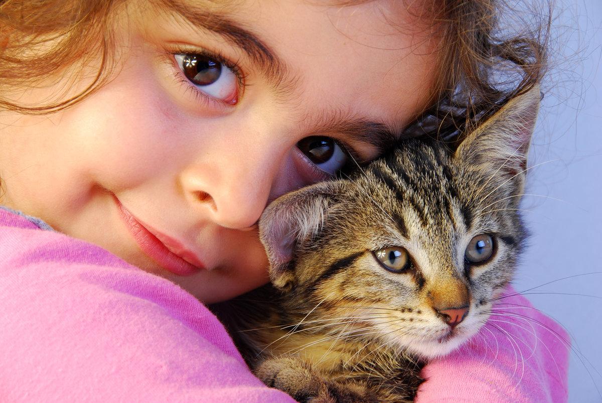 Сталкер прекрасной, картинки смешные с кошками и людьми