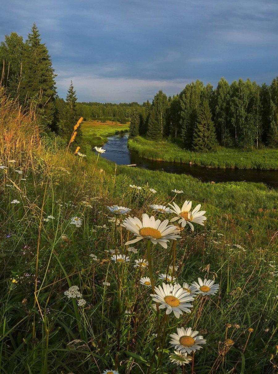 полицейских уволили летние пейзажи россии картинки знаете