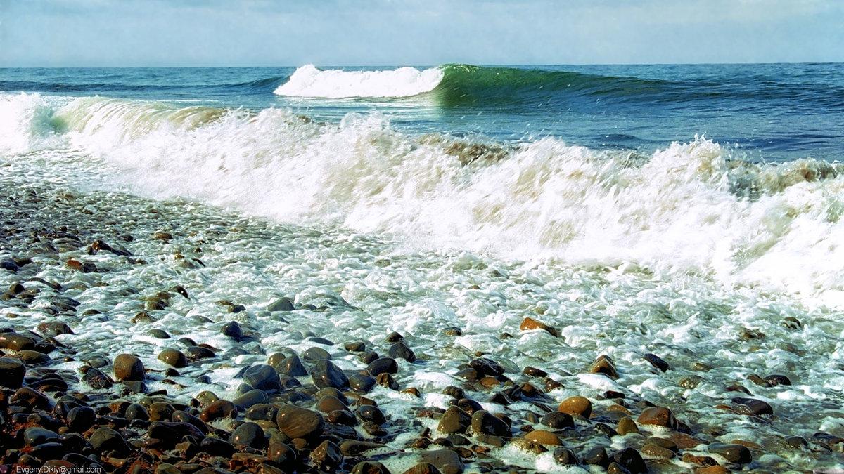 Краснодар черное море фотографии