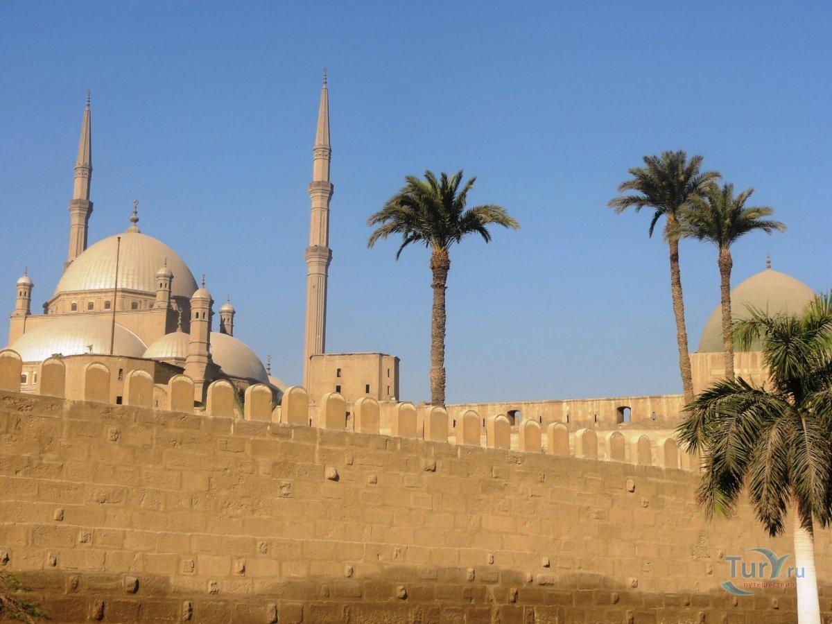 египет каир фото города оно встало