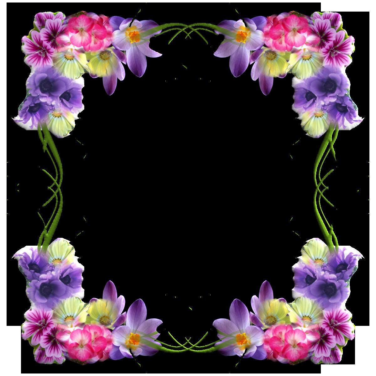 Букетами, картинки в рамке цветы