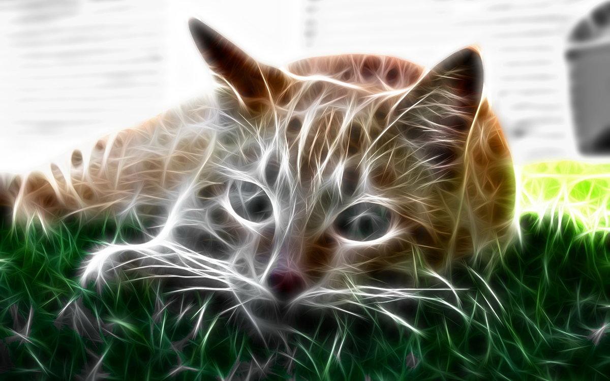 кировском рисунки животных обои телефон, наш технический