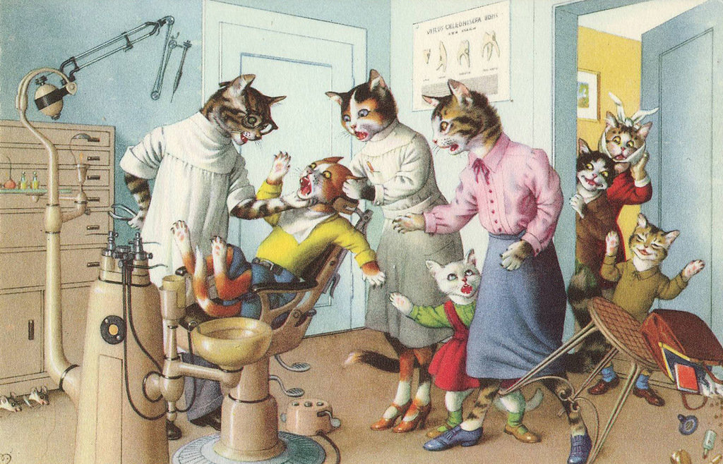татьяна парикмахерская открытки с котом можно холодильнике