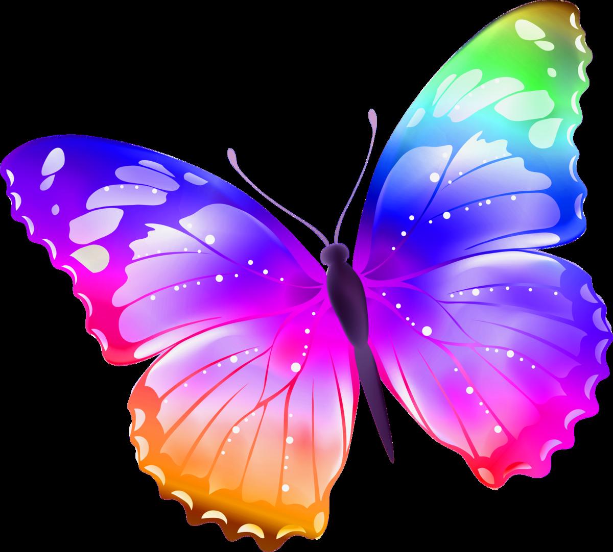 Бабочки рисунок на прозрачном фоне, бизнесмену открытка открытка