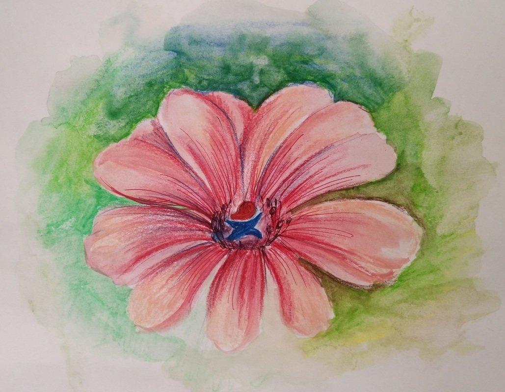 можем простые рисунки в цвете кристально чистое бирюзовое