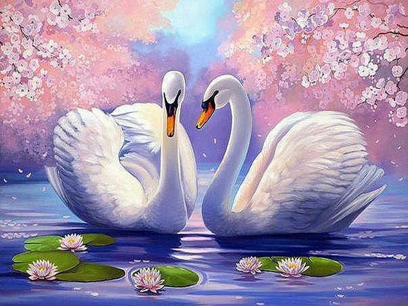 Картинки лебеди для детей