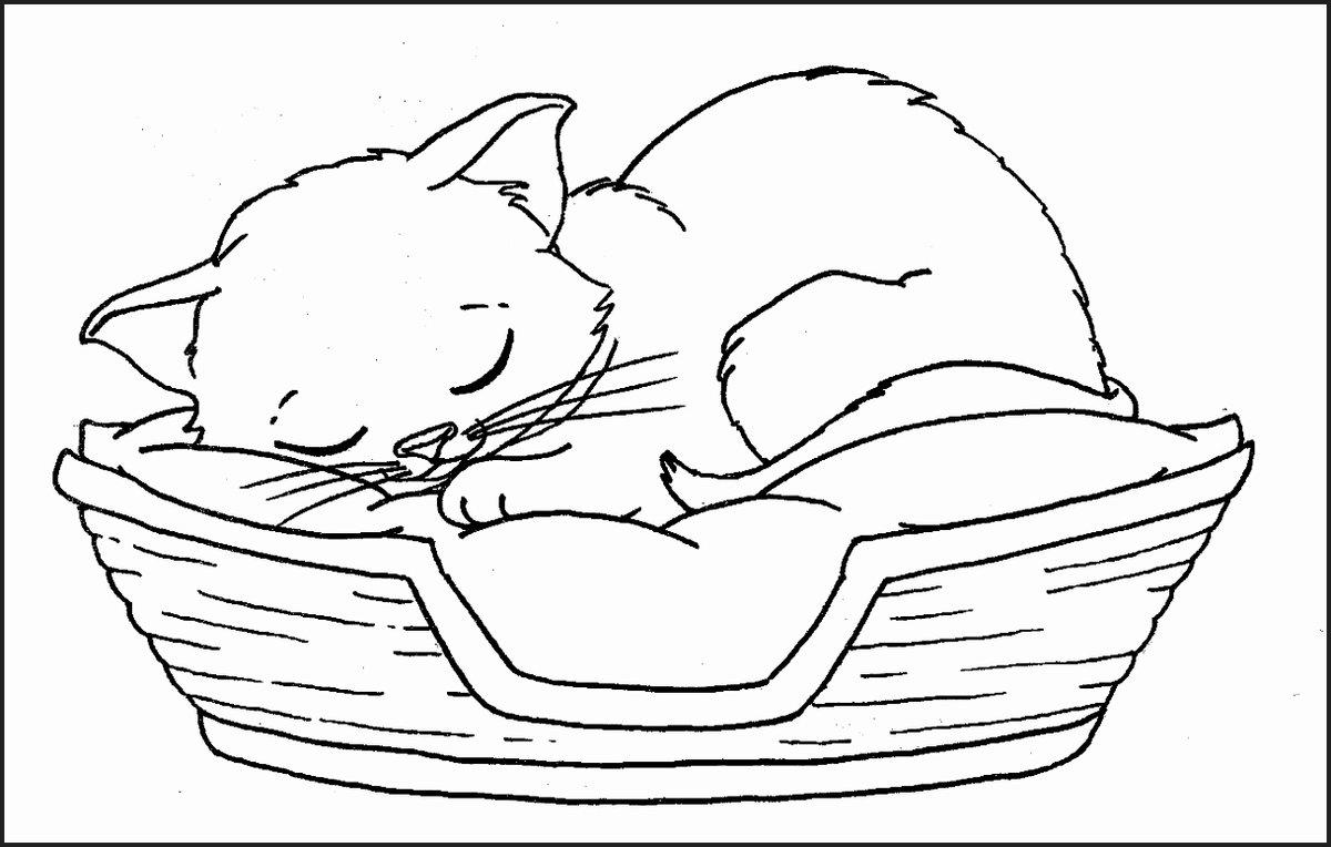 Рисунок спящие котята