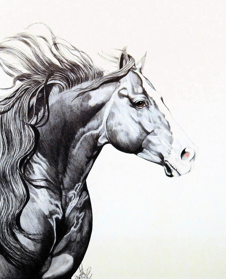 Лошади картинки красивые нарисованные