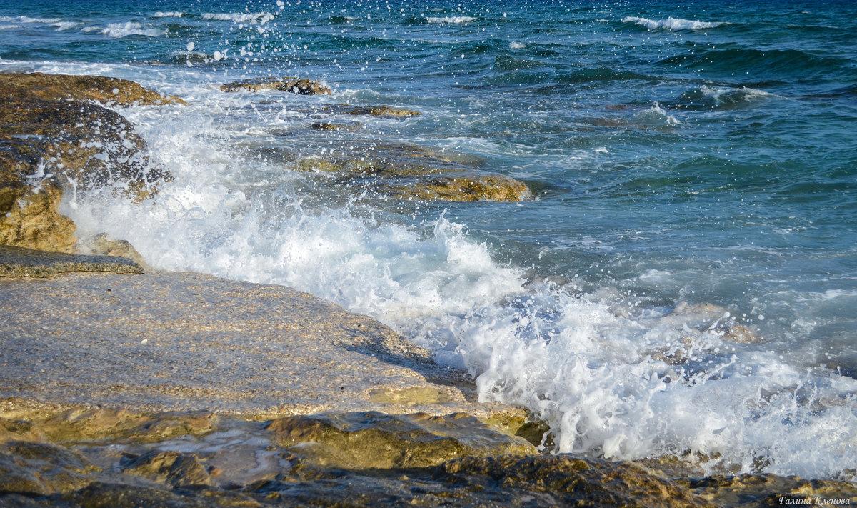 Радостный плеск волны