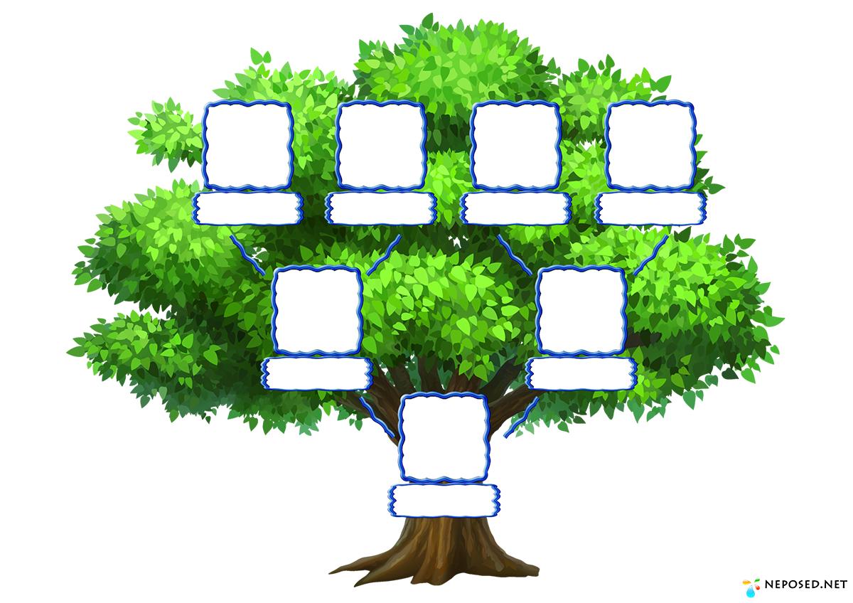 генеологичне дерево картинки распечатать древесину