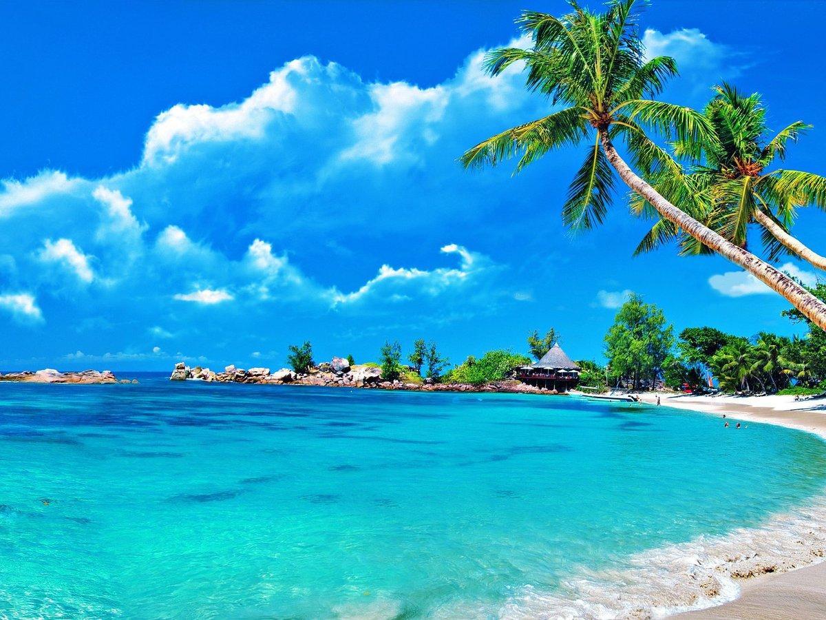 Открытки пляжа и моря, днем