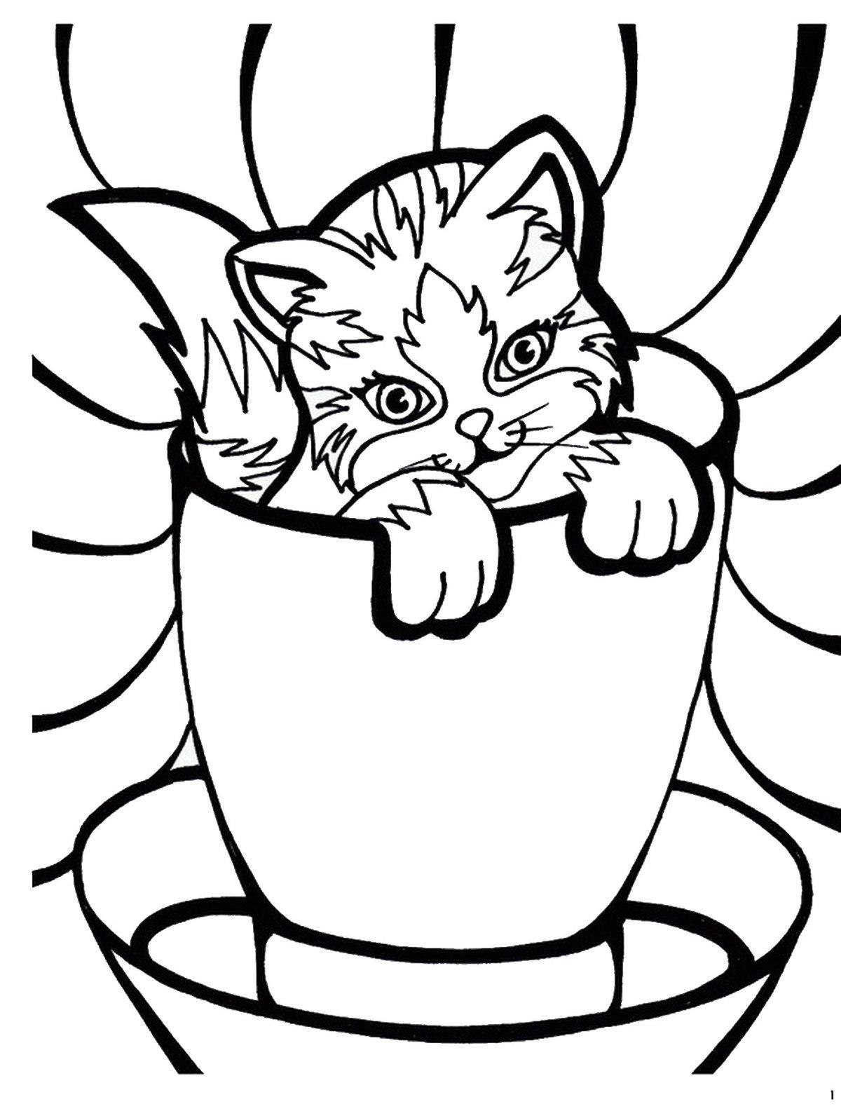 Раскраски картинки с котами