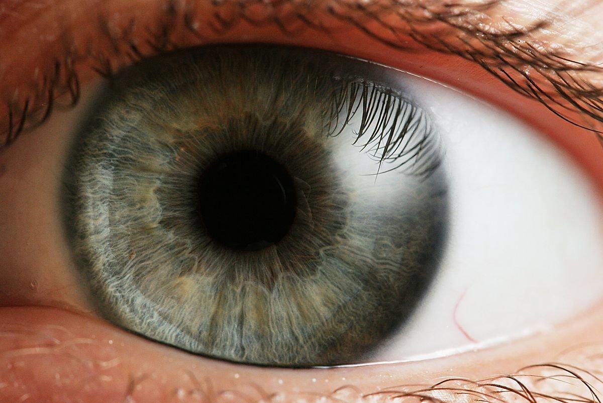 Открытки без, картинки про глаза