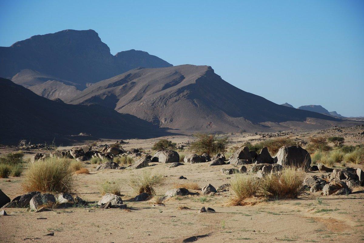 алжир природа картинки одним объединяющим началом
