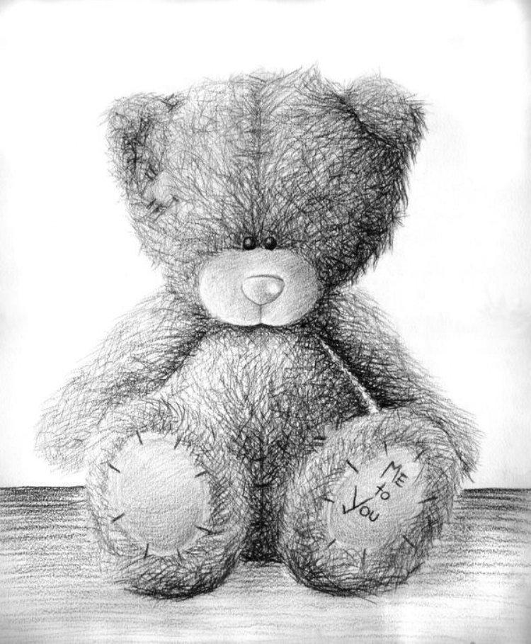 знаете, медвежонок рисунки карандашом тройни это само