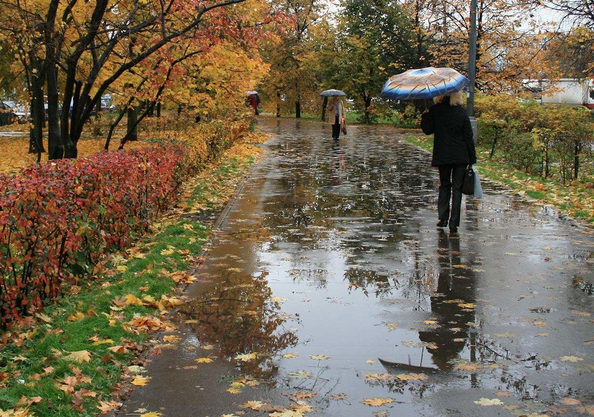 Шестнадцатилетие, картинки дождь осенью