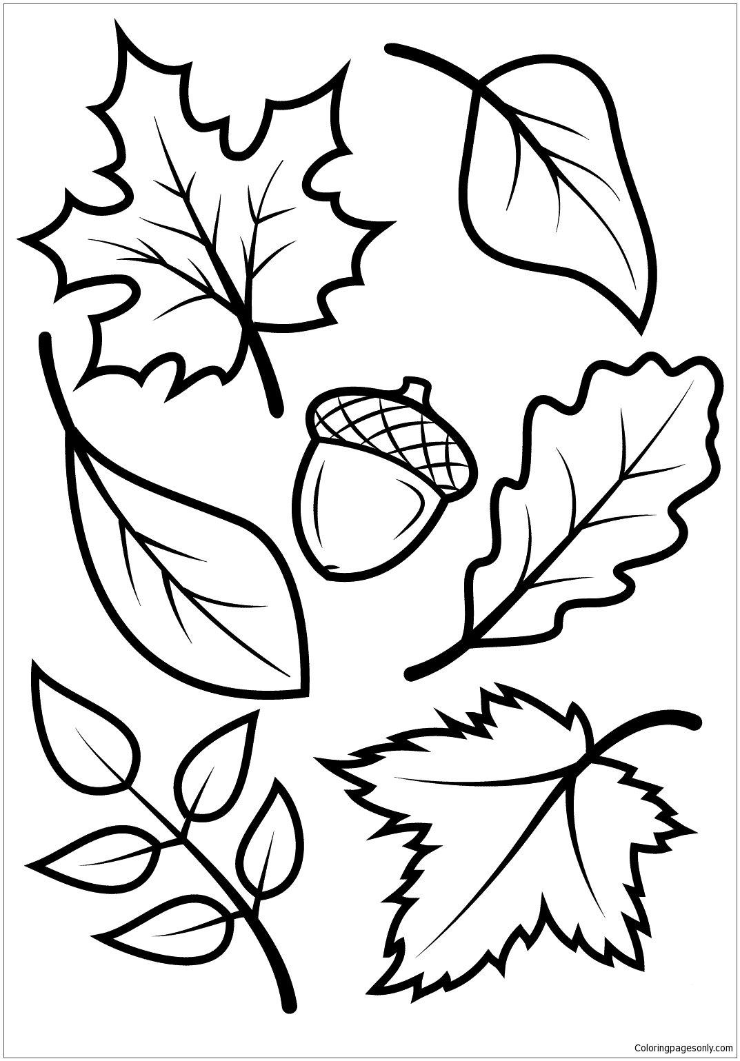 Картинка трафареты осенних листьев