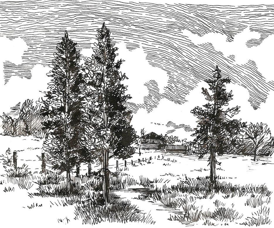 Графика рисунки природа