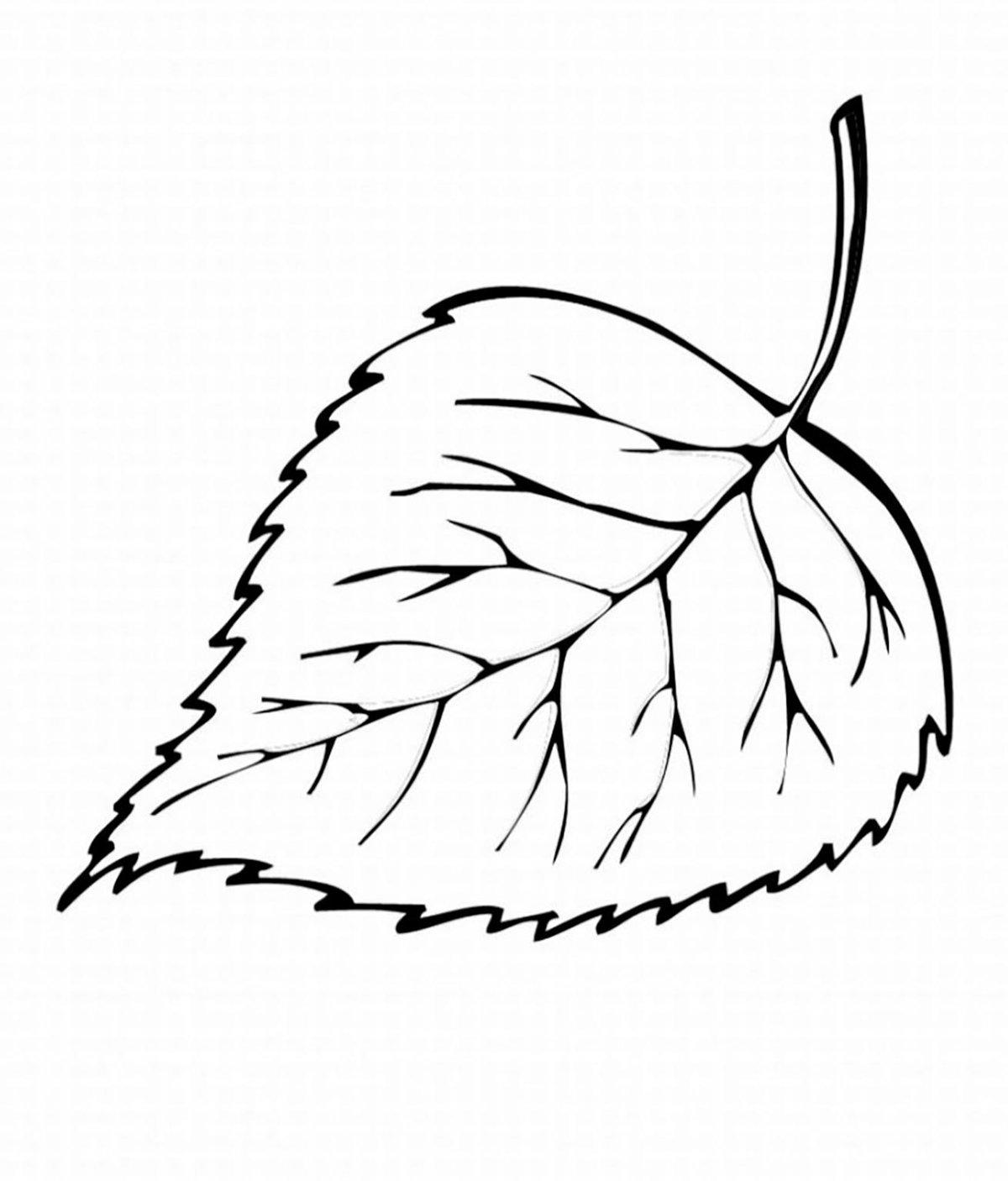 после окрашивания картинка раскраска осенние листья большинстве случаев бодиарте