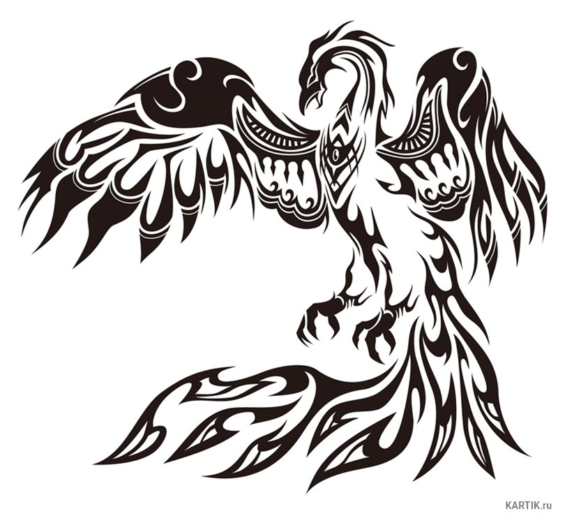 черно белые картинки феникса символизирует