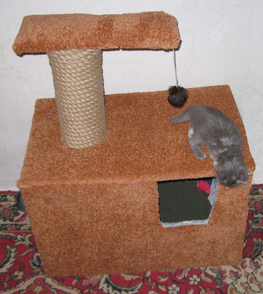 домики для кошки своими руками фото может быть