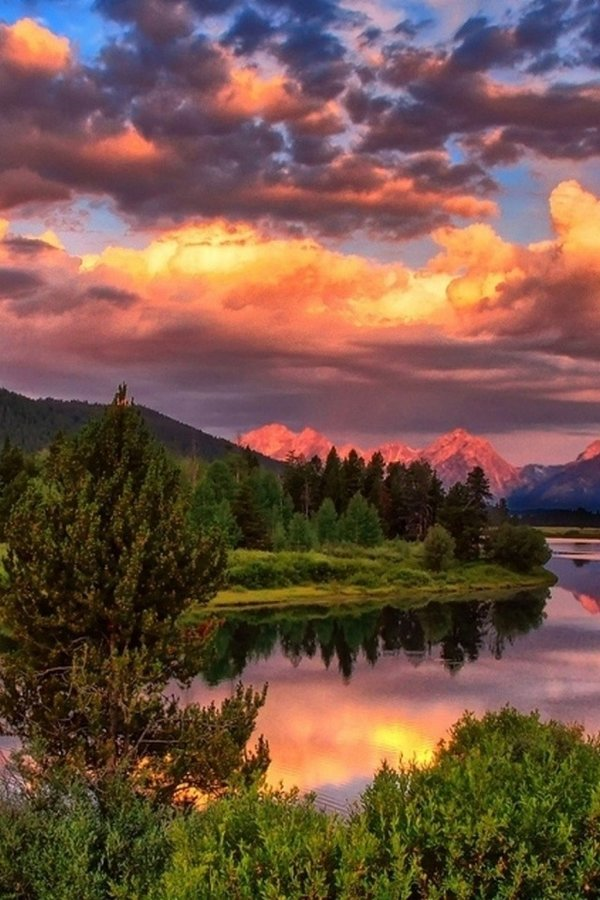 Красивые картинки природы вертикальные