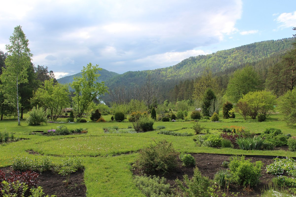 горно алтайский ботанический сад фото