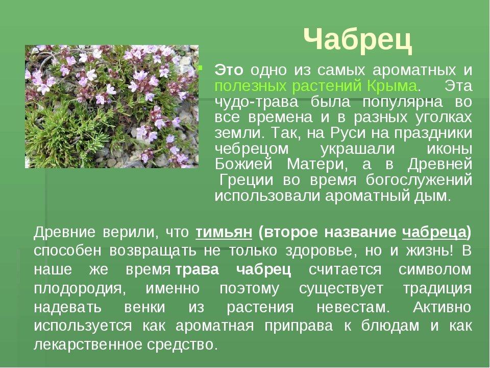 праздником, фото лекарственных растений с названиями и описанием тратить