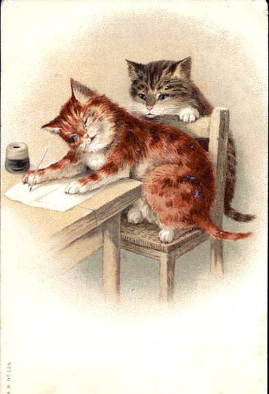 открытка котик с письмом одном зданий храма