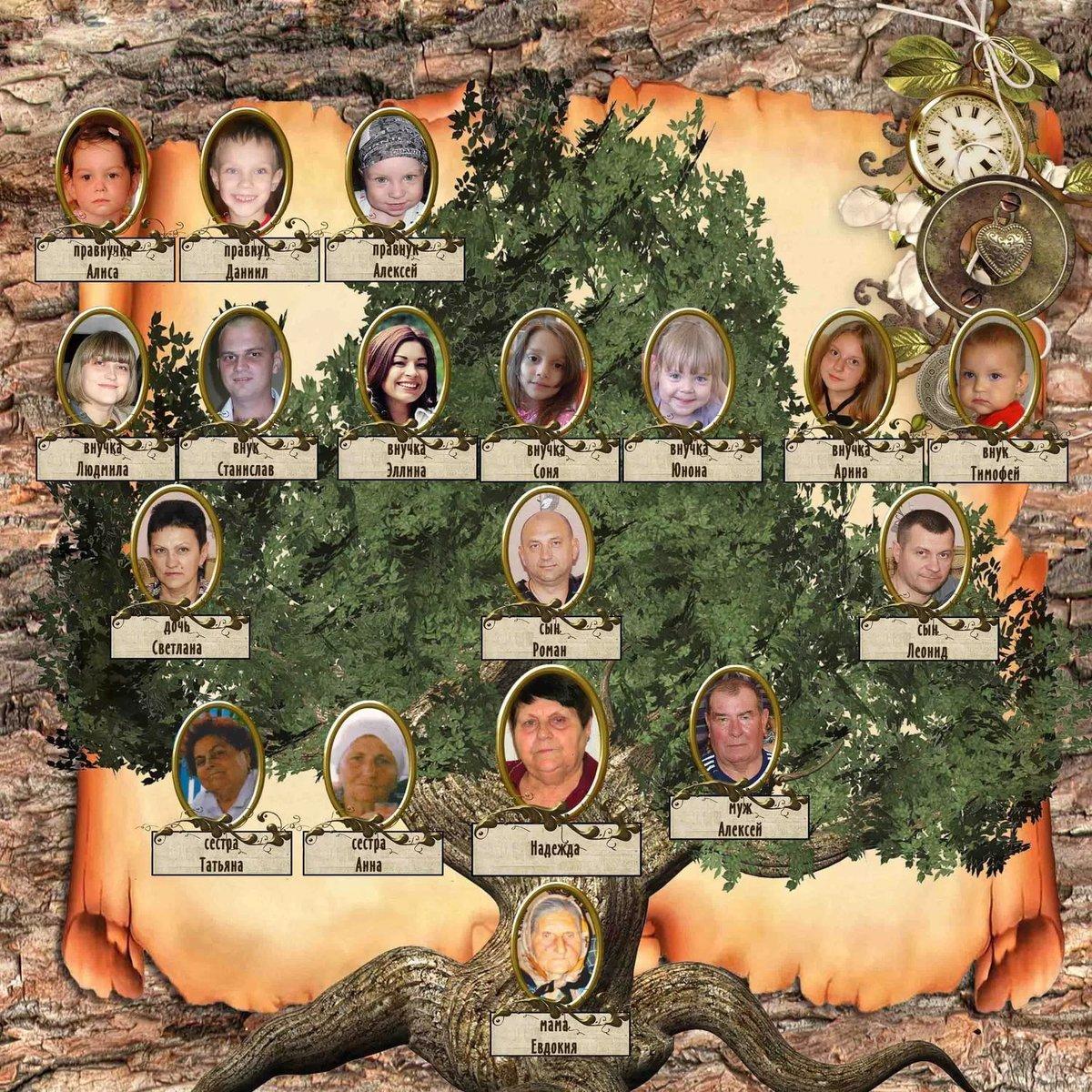 генеологичне дерево шаблон фото кекс