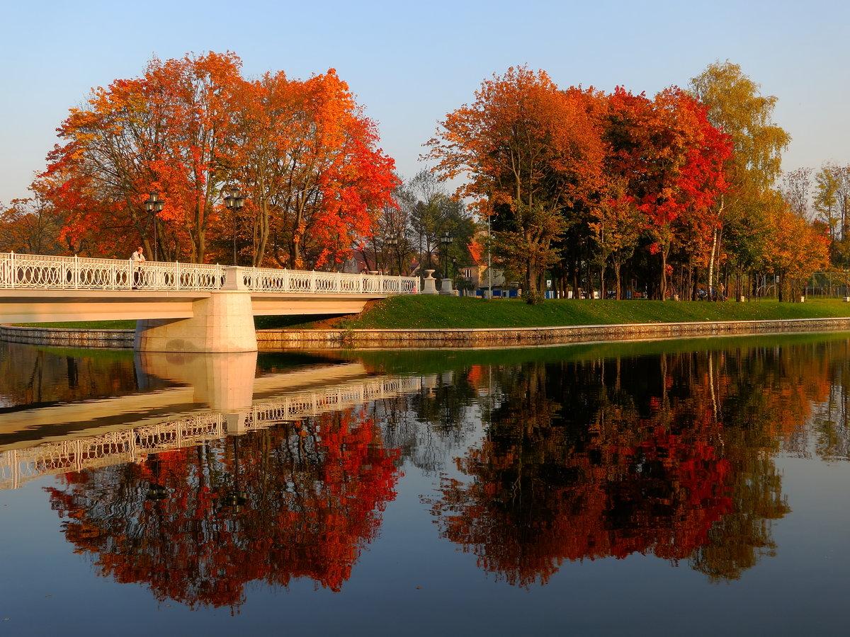 картинки осени фото калининград