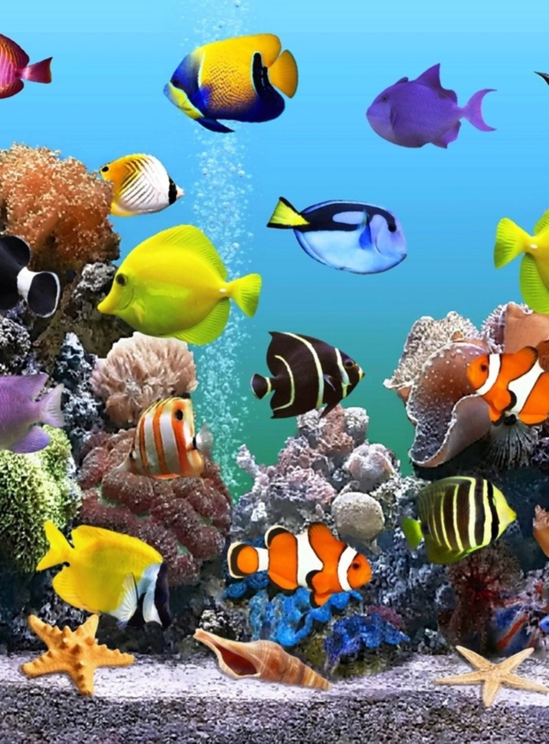 все движущаяся картинка с рыбками на телефон он, словам