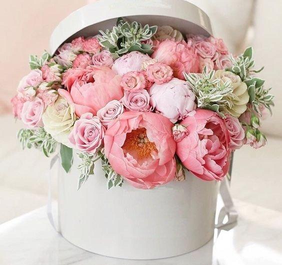 Одноклассниках, открытки с розами или пионами