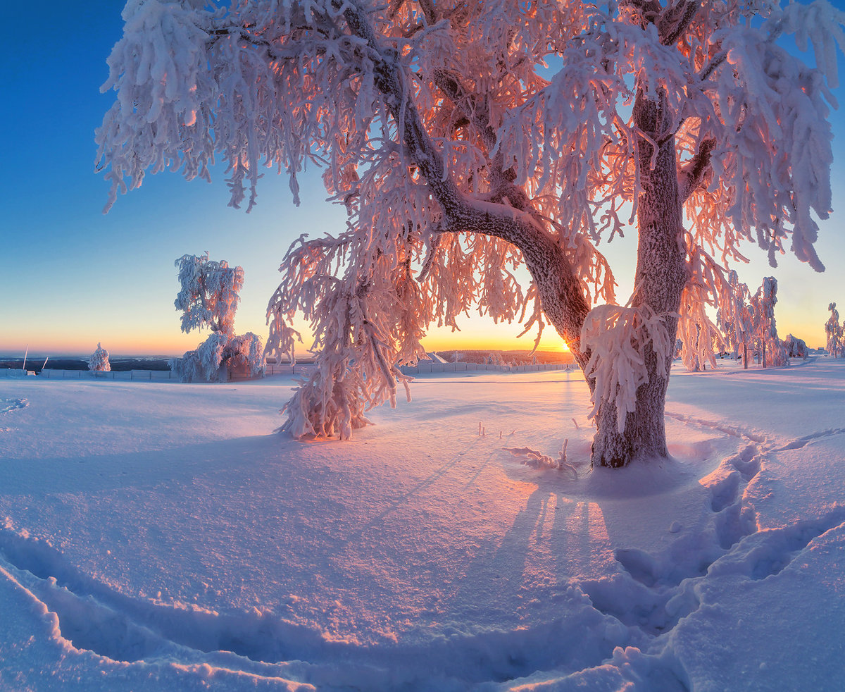 дешевые самые красивые картинки про зиму для фото, представленные