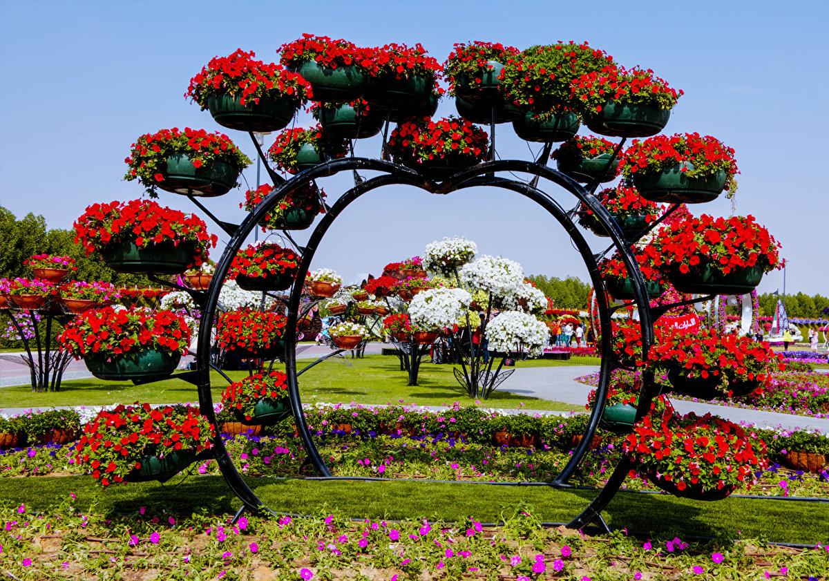 Цветочные арки картинки