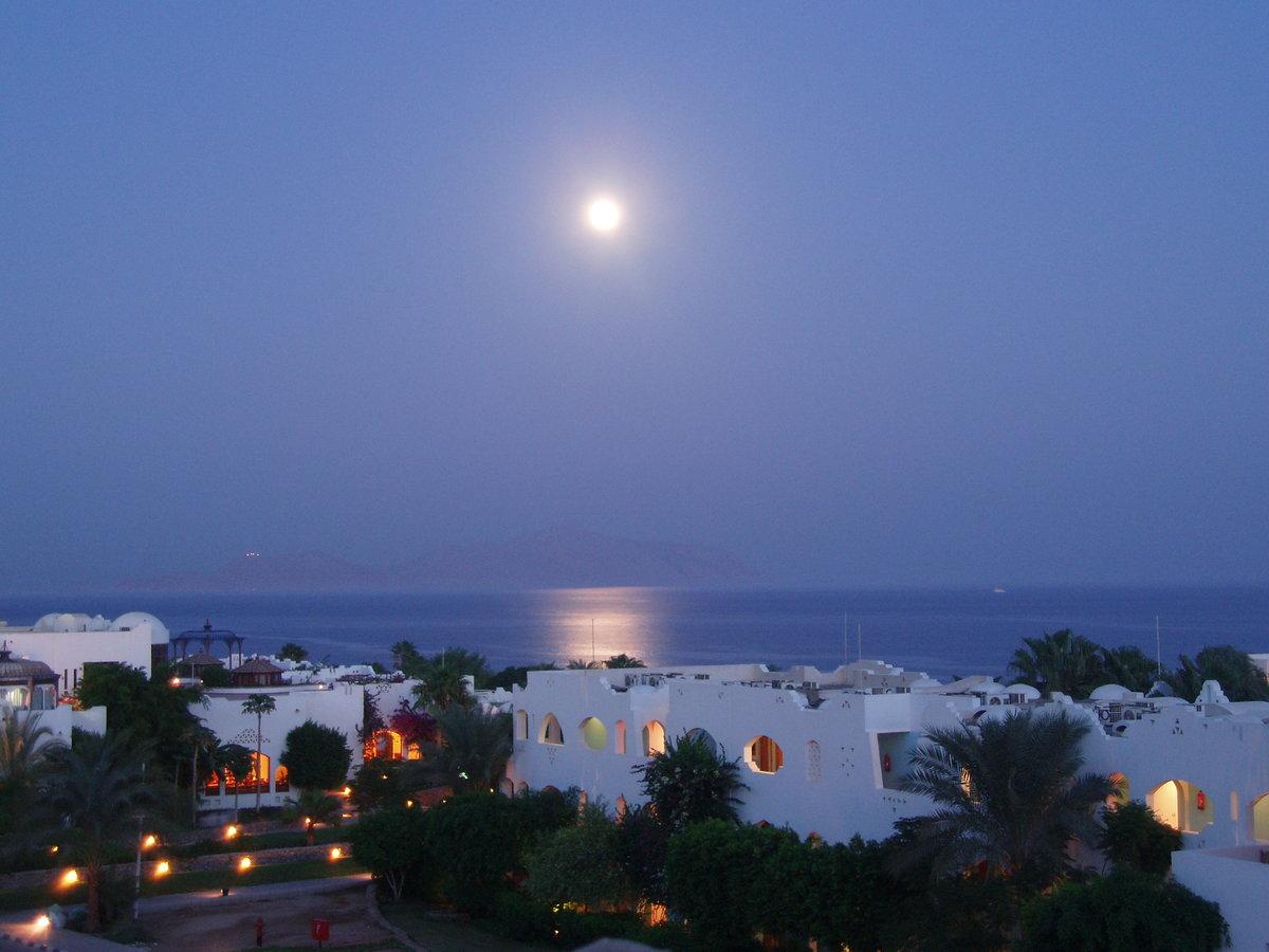 картинки египет ночь один