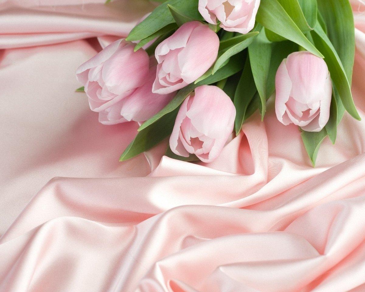 Красивая открытка цветов нежная, днем