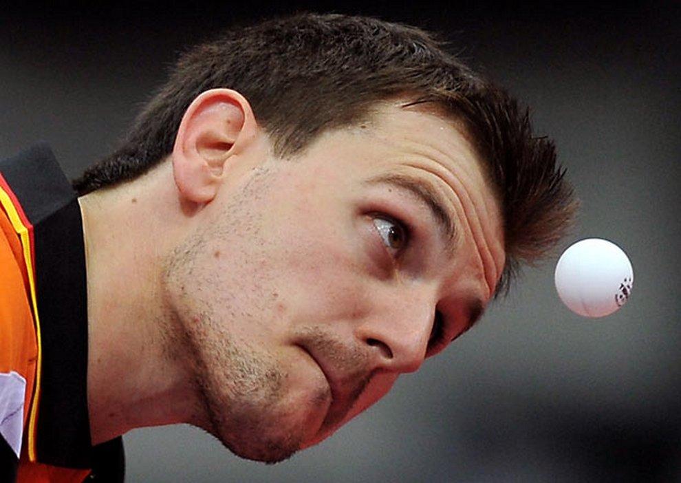 Смешные картинки настольного тенниса, изображением тигра