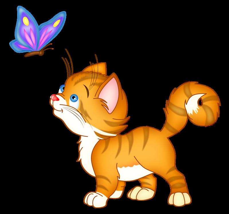 Котик картинки для детей на прозрачном фоне
