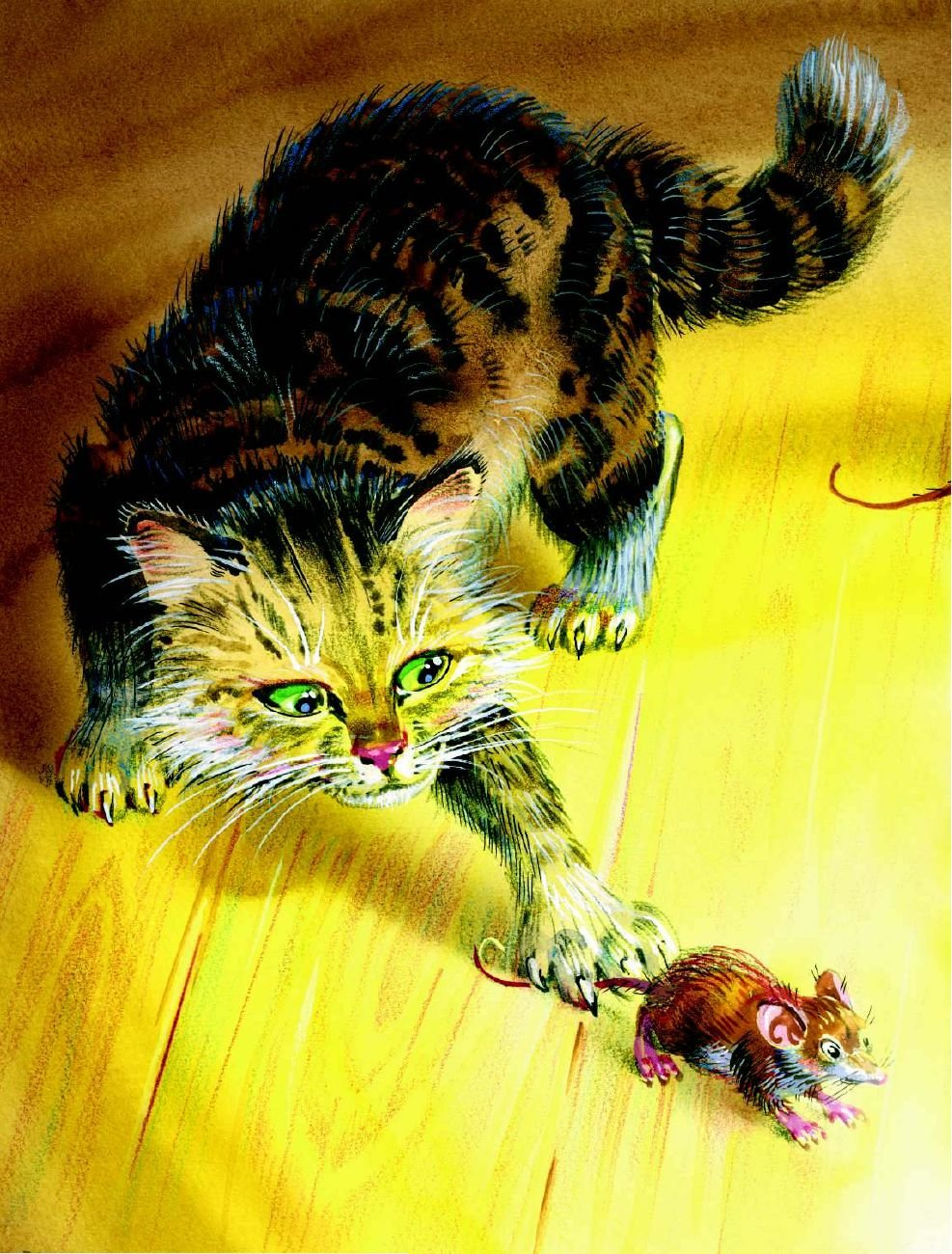 Серия картинок котенок