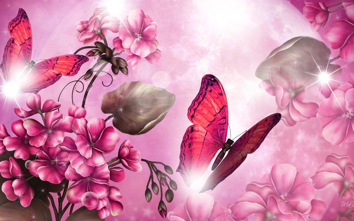 Именинами денис, очень красивые картинки цветов на заставку в телефон