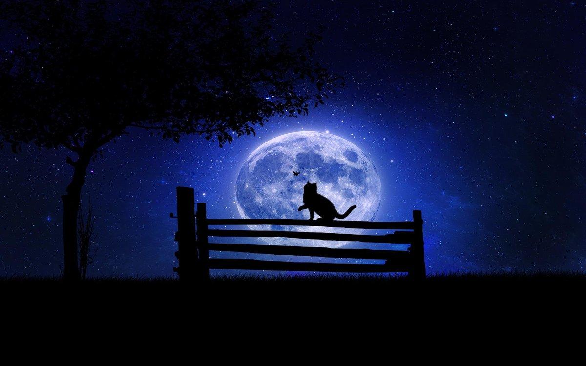 Картинки с изображением ночи