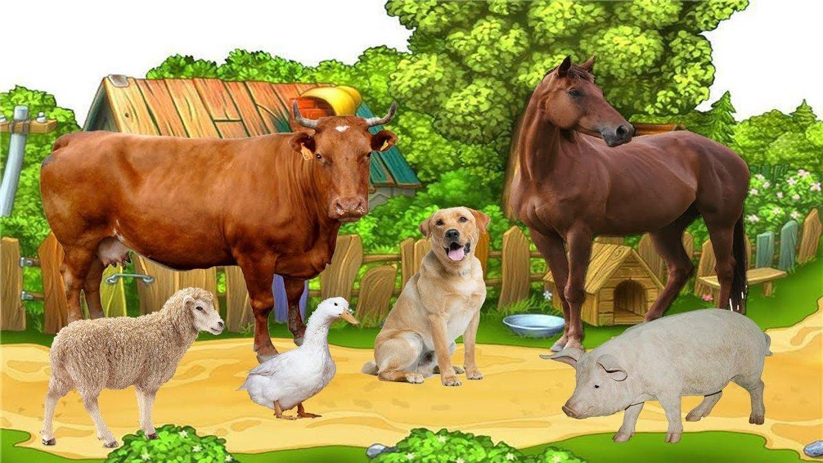Картинка для детей дикие и домашние животные на прозрачном фоне