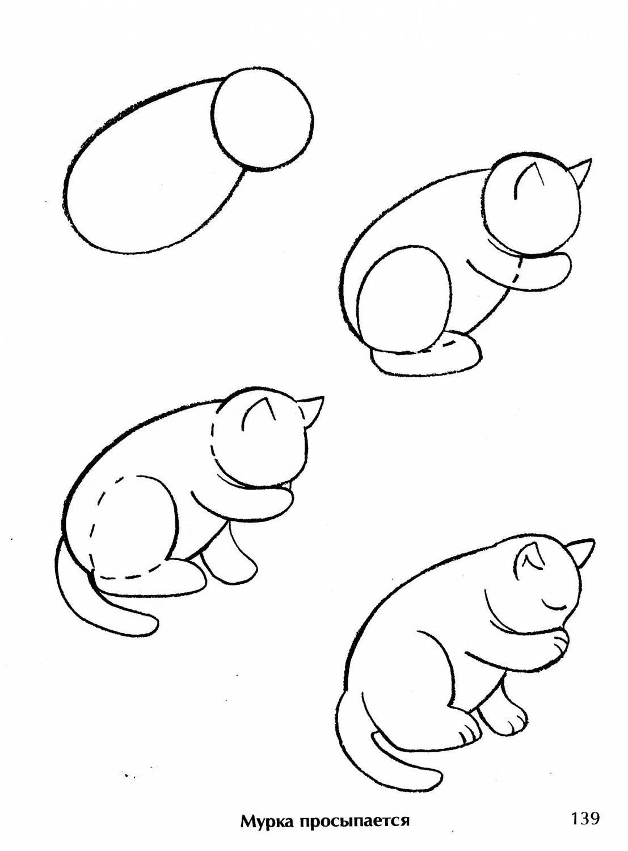 Картинки чтобы рисовать животных
