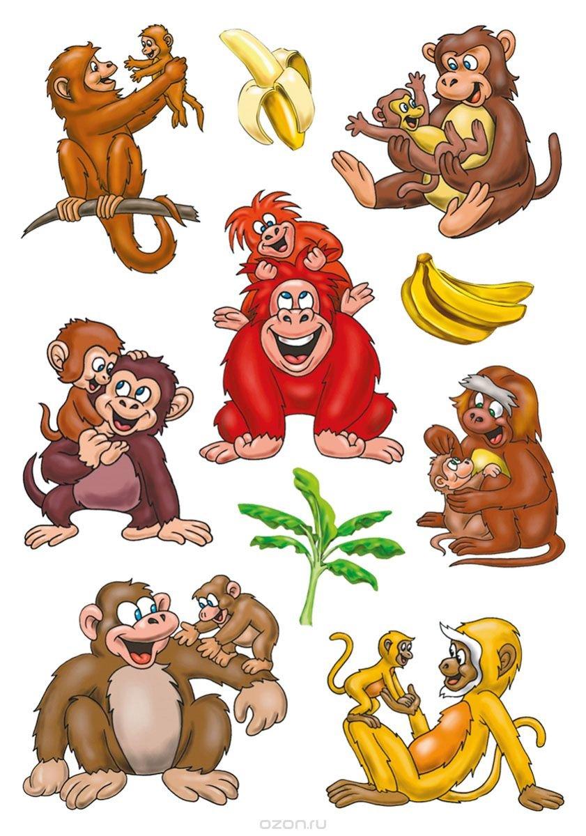 Прикольная обезьяна рисунки, про кошек