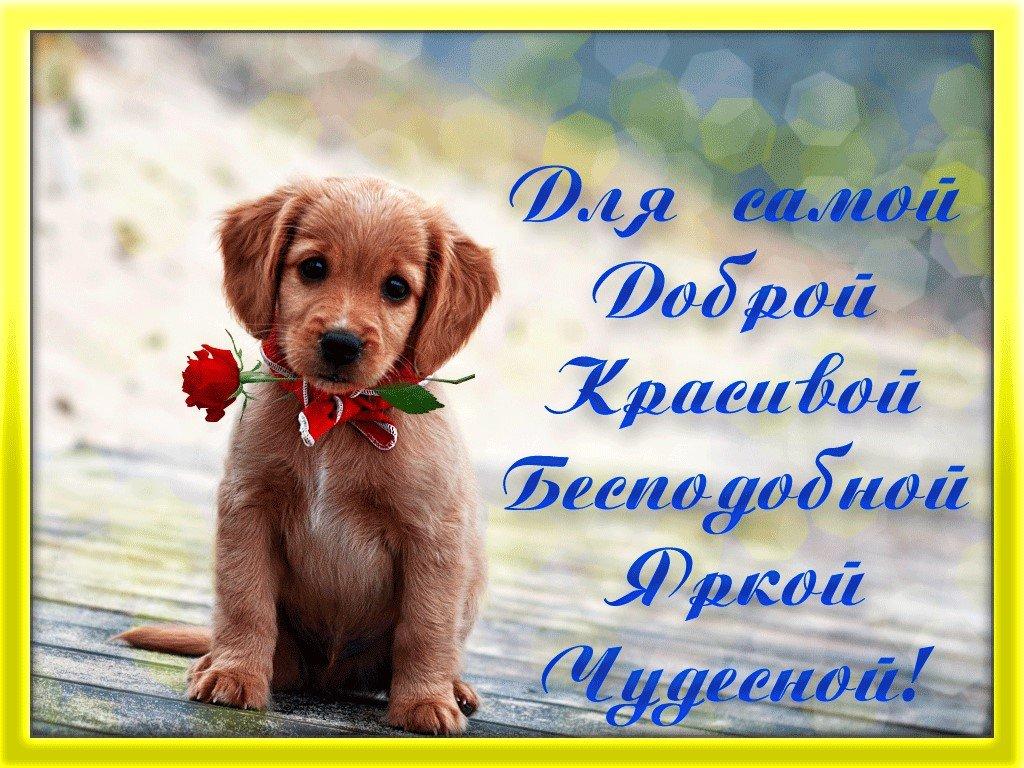 Красивую открытку с пожеланием