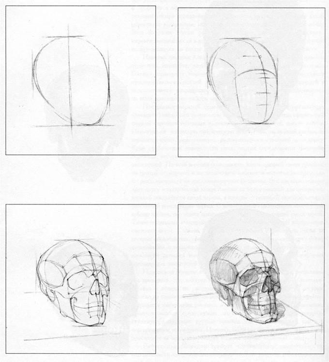 рисуем картинки карандашом поэтапно череп древности река была