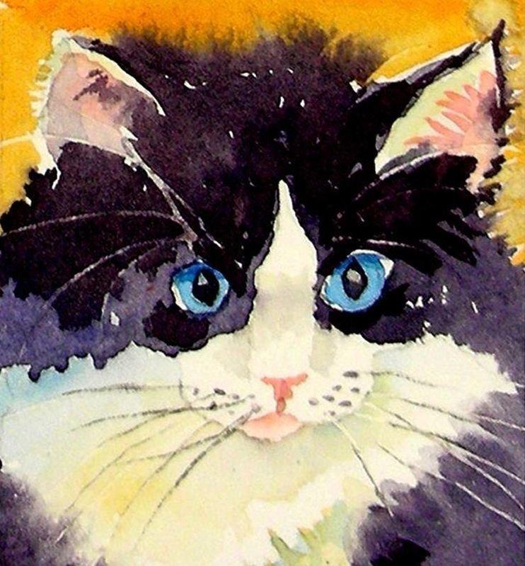 Рисунки кошки поэтапно гуашью нас