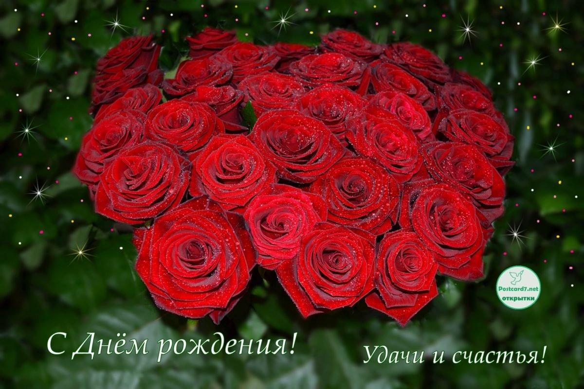 Видами, открытки с днем рождения розы фото