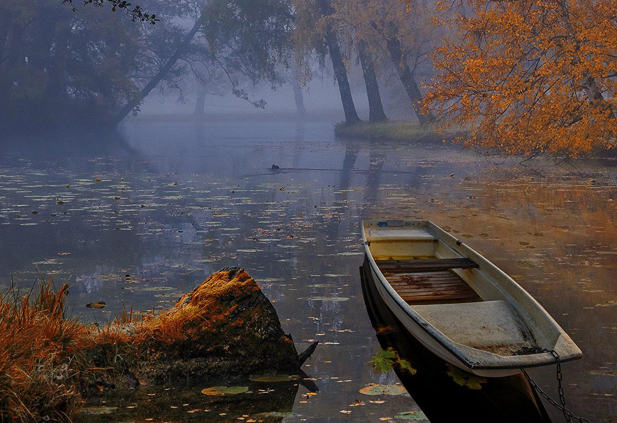 лодка, озеро, туман, камыш обои на рабочий стол и картинки